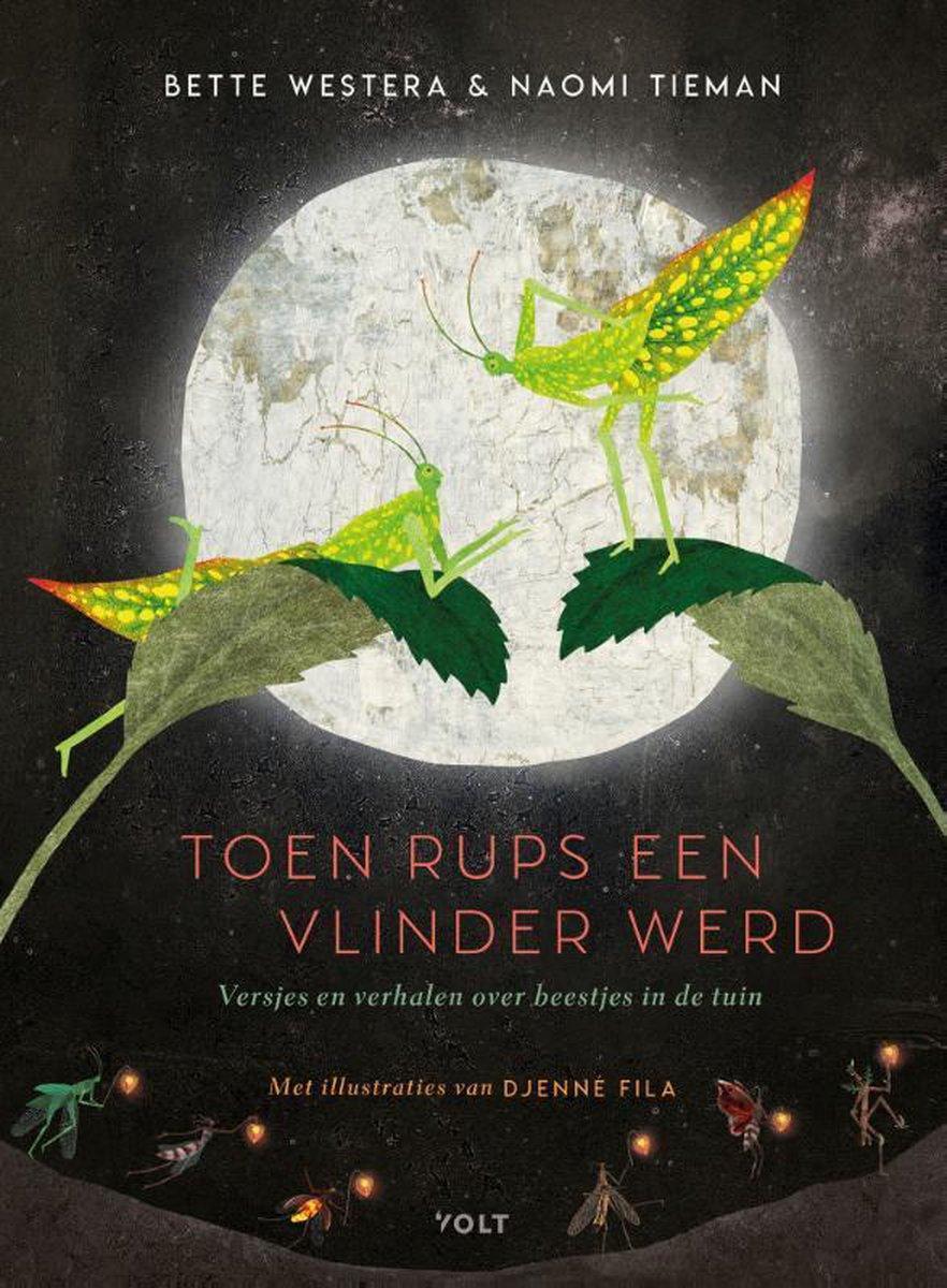 Boek cover van 'Toen Rups een vlinder werd' geschreven door Naomi Tieman